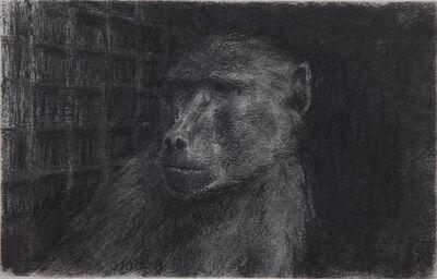 Miguel Branco, 'Untitled (Terra) #13', 2013