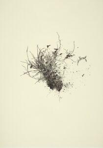 Miriam de Búrca, 'Deconstructing the North III: Grass', 2013
