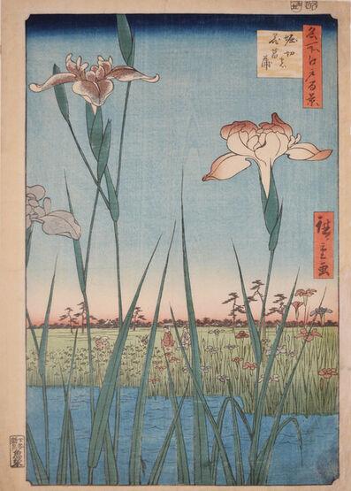 Utagawa Hiroshige (Andō Hiroshige), 'Horikiri Iris Garden', 1857