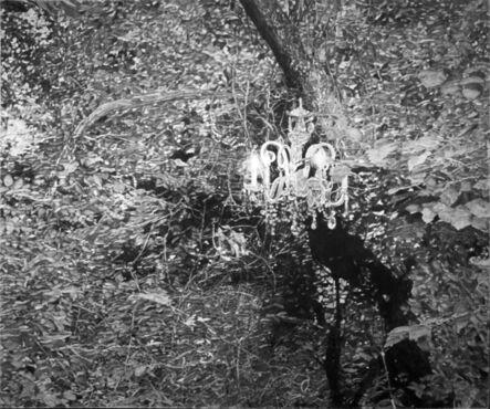 Hugo Bastidas, 'Illumination', 2015