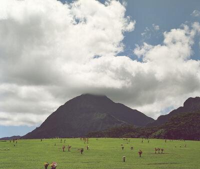 LM Chabot, 'Hawaii 35', 2015