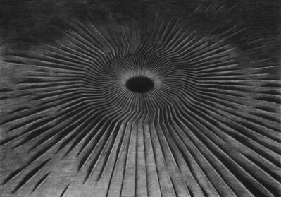Levi van Veluw, 'The Core', 2017