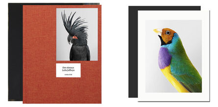 Leila Jeffreys, 'Des oiseaux - limited edition', 2020