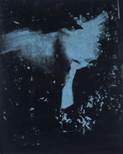 Wendy Small, 'Blue Birds 3', n/a