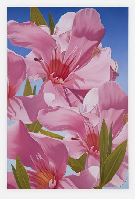 Mustafa Hulusi, 'Cyprus Realism (Oleander 9)', 2019