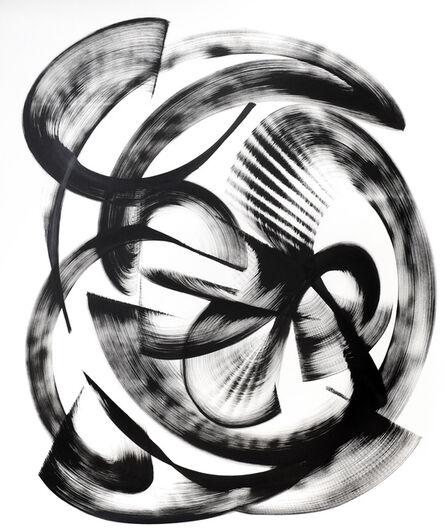 Thomas Hammer, 'Nesiota elliptica', 2015