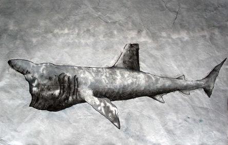 Jim Holyoak, 'Bashing Shark', 2008