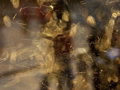 Igor Eskinja, 'Golden Fingers', 2017