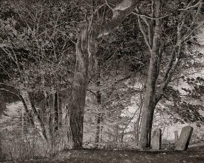 Linda Connor, 'Olson's Family Graveyard', 2006