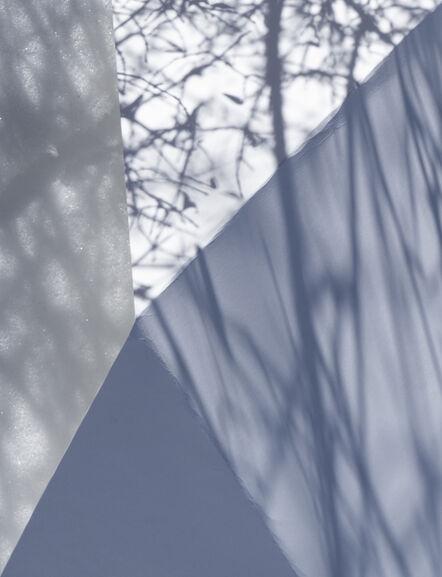 Brenda Biondo, 'Shadow Legacy no. 17', 2020
