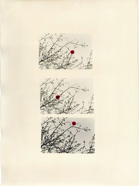 Bruno V. Roels, 'A Guide To Cherry Blossoms (Three Scarlet Dots)', 2019