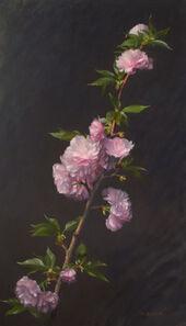 William Bartlett, 'Cherry Blossoms', ca. 2019