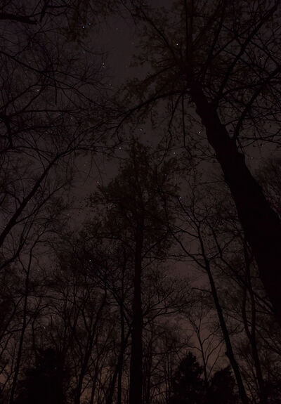 Jeanine Michna-Bales, 'A Lesson in Astronomy, Southern Kentucky', 2014