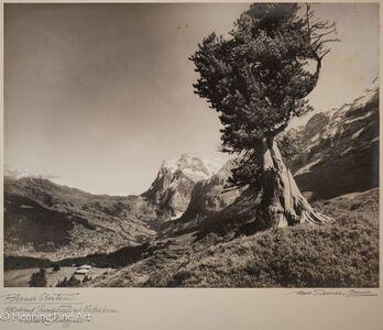 """Albert Steiner, '""""Berner Oberland. Blick auf Grindelwald mit Wetterhorn. - von der Kl. Scheidegg aus.-""""  (""""Bernese Oberland. View of Grindelwald with Wetterhorn. - from the Kl. Scheidegg.- """")', 1925-1950"""