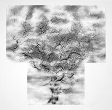 Jim Sullivan, 'Tree #3', 2012