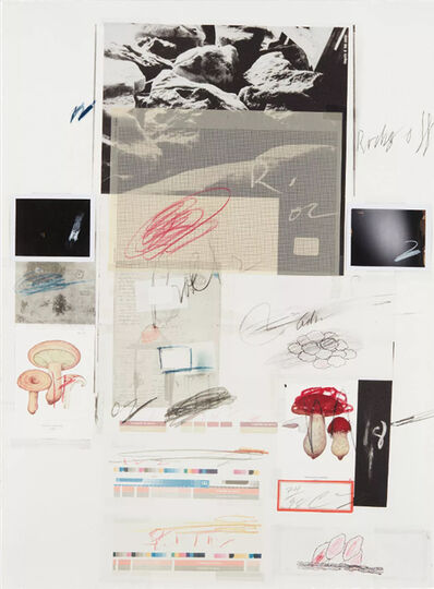 Cy Twombly, 'Natural History Part I/ NO. X,', 1974