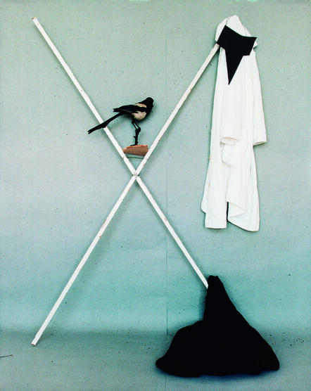 Nadja Bournonville, 'One for Sorrow, Two for Joy', 2012