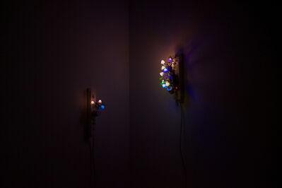 Trevor Yeung, 'Night Mushroom Colon (Four)', 2015