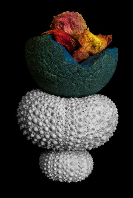 Allan Markman, 'Urchins, Ball and Rose Petals'