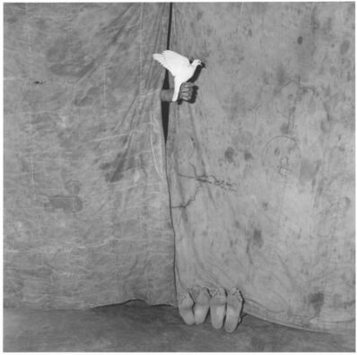Roger Ballen, 'Juxtaposed (from Shadow Chamber series)', 2004