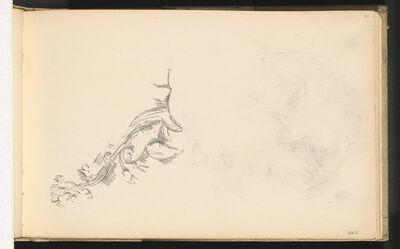 Paul Cézanne, 'Branch in Flower', 1886/1889