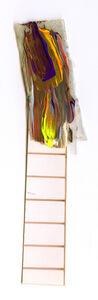 Andrea Pinheiro, 'Ladder', 2014