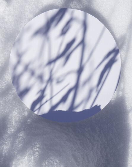Brenda Biondo, 'Shadow Legacy no. 13', 2020