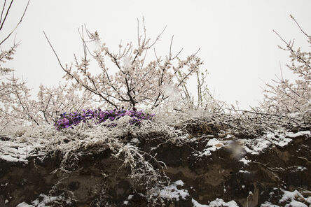 Kim Dong Wook, '꽃에게', 2018