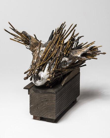 Elizabeth Jordan, 'Goat Head sculpture in Wood box: 'Jersey Devil II'', 2016