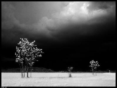 Elio Ciol, 'Prima del temporale-Lestans', 1963