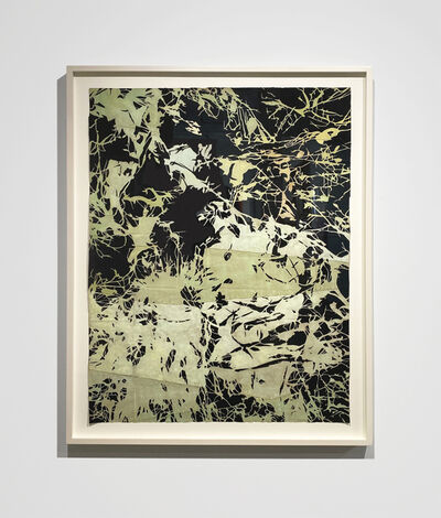 Maysey Craddock, 'Visions in the understory ', 2020