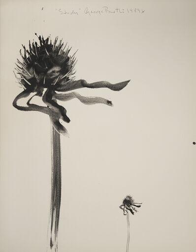 George Bartko, 'Study (Weeds)', 1989