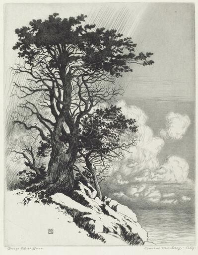 George Elbert Burr, 'Coast at Monterey, California', in or after 1906