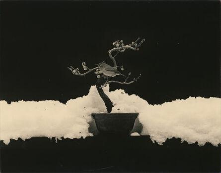 Yamamoto Masao, '#1675'