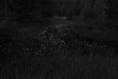 Ken Rosenthal, 'Trail', 2012