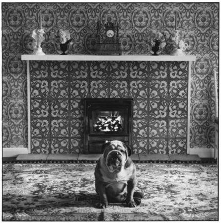 Elliot Erwitt, 'London, England', 1966