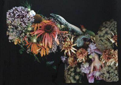 Nobuyoshi Araki, 'Flowers', 2008-2010