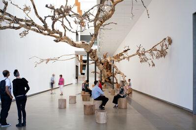 Cai Guoqiang 蔡国强, 'Eucalyptus', 2013
