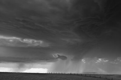Mitch Dobrowner, 'Fish and Fence', 2014