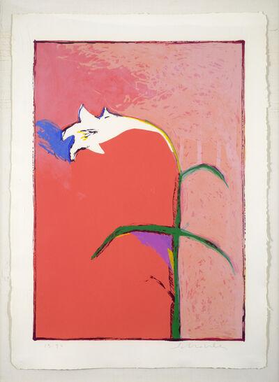 Fritz Scholder, 'Lily', 1983