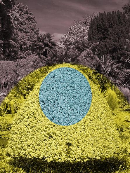 Helen Sear, 'Surreal Bush 3', 2020