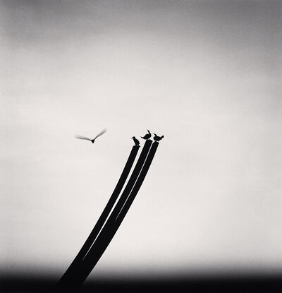 Michael Kenna, 'Four Birds, St. Nazaire, France', 2000