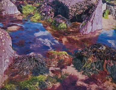 Nick Waplington, 'Rock Pool No. 1', 2004