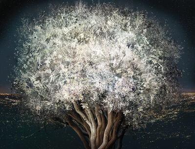 Ysabel Lemay, 'Stillness'