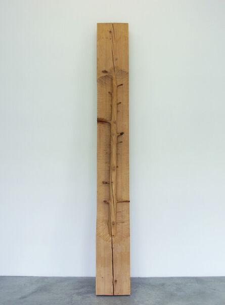 Giuseppe Penone, 'Ripetere il bosco - frammento 6', 2007-2008