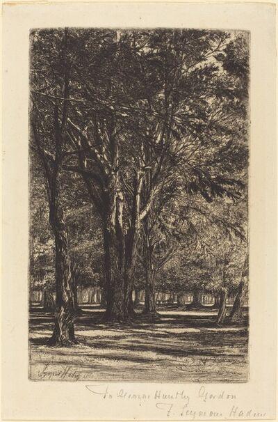 Francis Seymour Haden, 'Kensington Gardens (The Larger Plate)', 1860