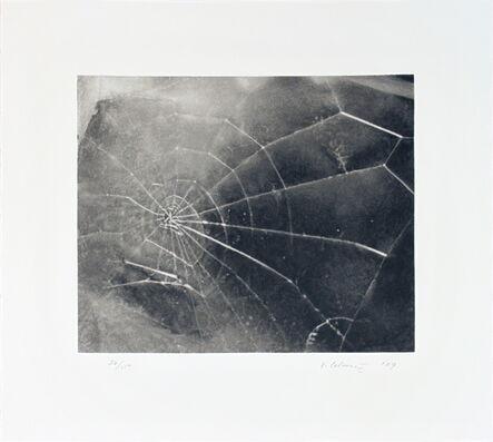 Vija Celmins, 'Spider Web', 2009