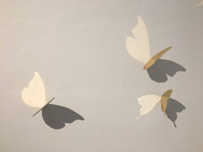 Barnaby Hosking, 'Butterflies (12)', 2015