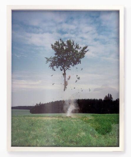 Michael Sailstorfer, 'Raketenbaum', 2008-2011