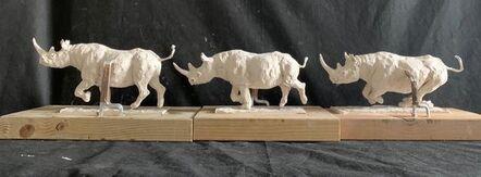 Mark Coreth, 'Charging Rhino', 2020